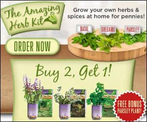 Amazing Herb Garden Kit Grow Herbs and Spices