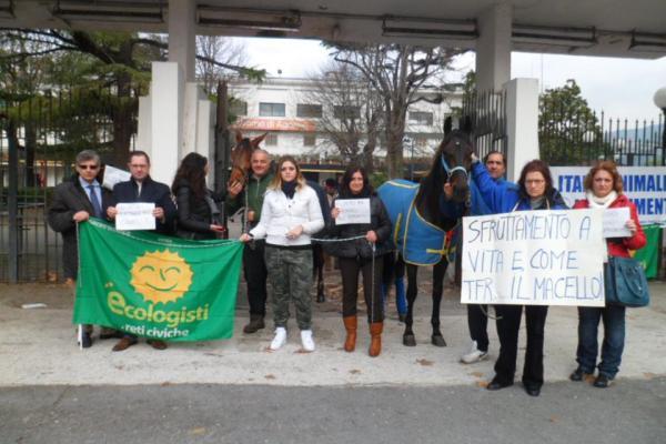 protesta per salvare i cavalli dell' ippodromo 4