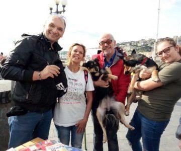 Napoli, domenica pro pelosi sul lungomare partenopeo. In campo le associazioni Bau Bau Angels e Associazione Nazionale Ecologisti Italiani