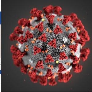 Effetti del Coronavirus tra scaffali vuoti, fake news e le tardive pulizie delle scuole