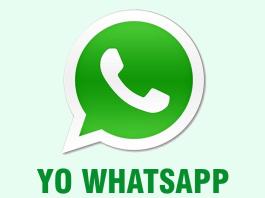 Change Blue Checklist on WhatsApp