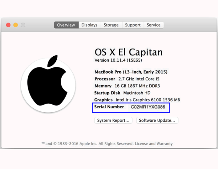 Check Apple Serial Number