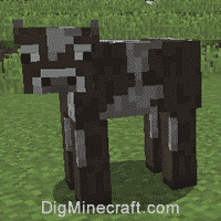 How to get leather in minecraft1