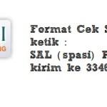 Format Cek Saldo SMS Banking Bank BNI
