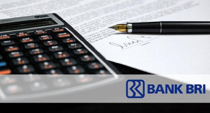 3 Jenis Kredit Pinjaman BRIGuna
