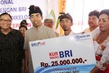 Pembiayaan KUR Bank BRI 25 juta