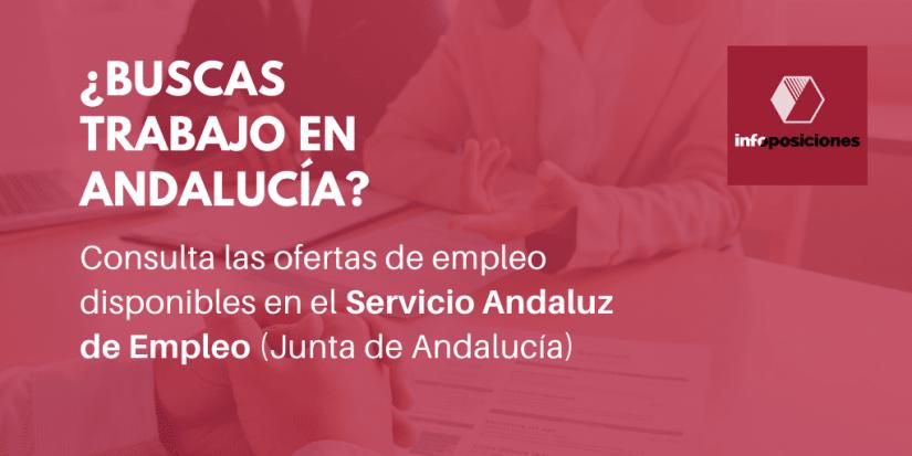 Ofertas de trabajo disponibles en la Web del Servicio Andaluz de Empleo - Infoposiciones