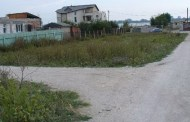 Reparatie trama stradala in  Palazu Mare