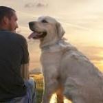 Pets –  Unconditional Friends