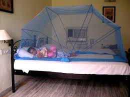 Mosquito Net in Bed