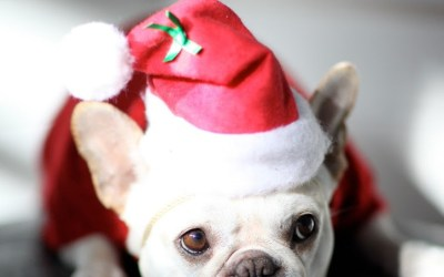 Aplazamos el sorteo de Navidad...¡solo hasta mañana!