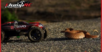 Video: Traxxas E-Revo Vs serpiente de cascabel