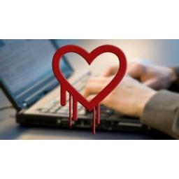 Programer koji je ''krivac'' za Heartbleed bag odbacio tvrdnje da je greška bila namerna