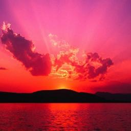 Šta se krije iza slika zalazećeg sunca i mačaka