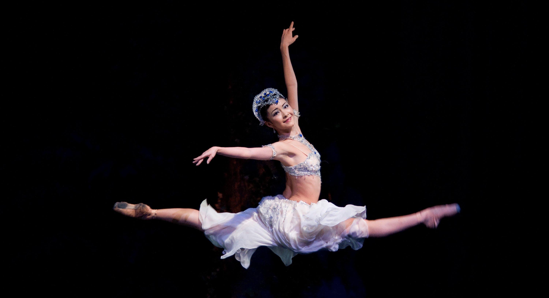 Disegno Di Una Ballerina Classica : Un video al giorno la danza delle ore di ponchielli nella