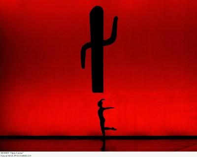 momix-opus-cactus-1