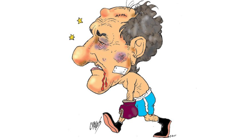 scioli-knock-out