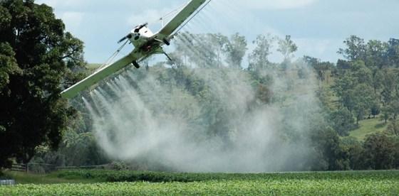 Glifosato vs agua potable