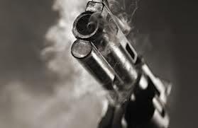 unknown gun