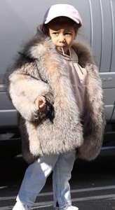 North-West-in-the-Fur-coat