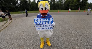 donald duck trump