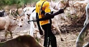 Herdsmen attack Godogodo commumity