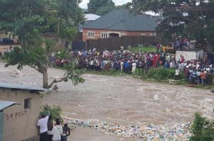 Image result for Flooding : 2,000 hectares of farmland submerged in Kwara