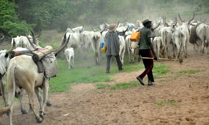 Video: Community In Enugu Chase Fulani Herdsmen Out Of Their Community