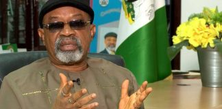 Labour and employment minister, Chris Ngige