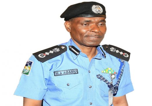 Police Ag IGP Mohammed Adamu 524x367 - Kaduna,Zamfara killings: IGP embarks on On-the-spot assessment of affected areas