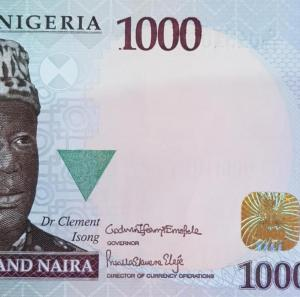 pris - Woman's Signature Appears On Naira For The First Time In 59-years(Photo)