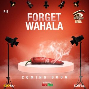 bbnaja - 2019 BBNaija: Finally Organiser Reveal When Reality Show Would Commence