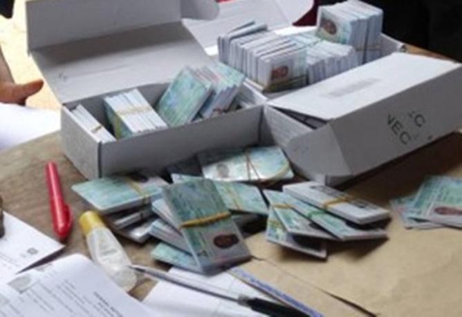 permanent-voters-cards-pvc