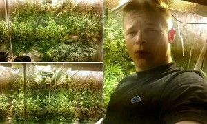 One of the incriminating cannabis selfies that trapped Richard Edmunds and Joshua Langmead. See SWNS story SWDRUGS: Langmead took pictures of the crop while Edmunds is pictured giving a thumbs-up sign as he grinned for the camera with the plants in the background. Both men worked at the same aerospace firm in North Devon and sold drugs to friends to pay off debts and pay for their own cannabis use.