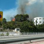 Un incendio forestal obliga a desalojar varias viviendas en Real de Gandía