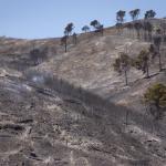 El incendio de la Calderona ya está perimetrado y estabilizado tras quemar 1.200 hectáreas