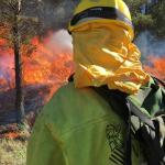 Desastre en la Calderona: ya son 1.200 hectáreas arrasadas