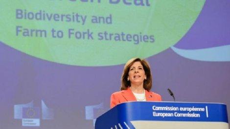 Stella Keriakides, comisaria de Sanidad de la Unión Europea/DM