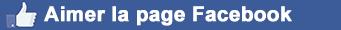 Facebook - Aimer la page