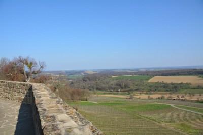 Burg Steinsberg27
