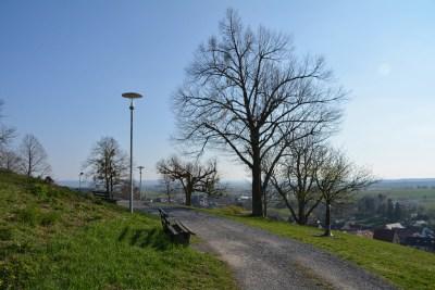 Burg Steinsberg45