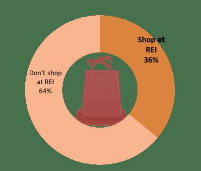 REI data 1