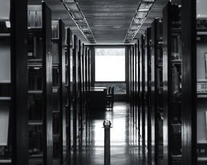 ORTIZ - Biblioteca2