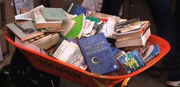 biblioteca19s
