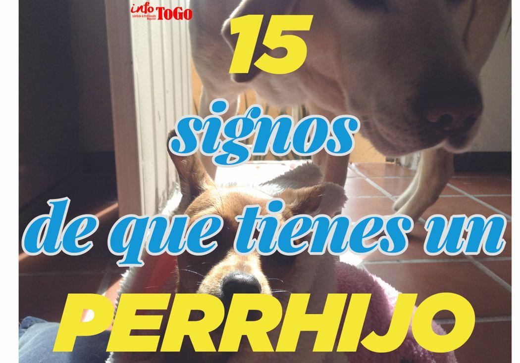15  signos de que tienes un perrhijo