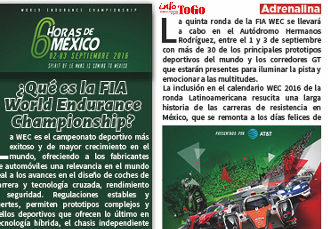 ¿Qué es la FIA  World Endurance Championship?