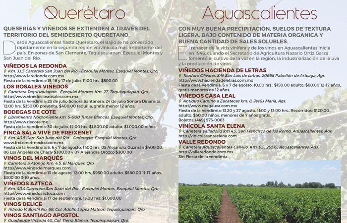 Fiestas de la vendimia en México: Querétaro