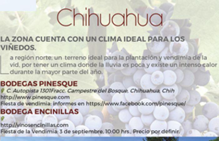 Fiestas de la vendimia: Chihuahua y CDMX