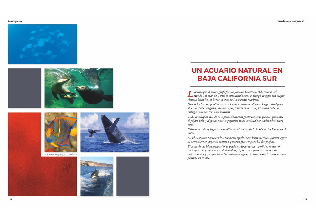 Un acuario natural en Baja California Sur