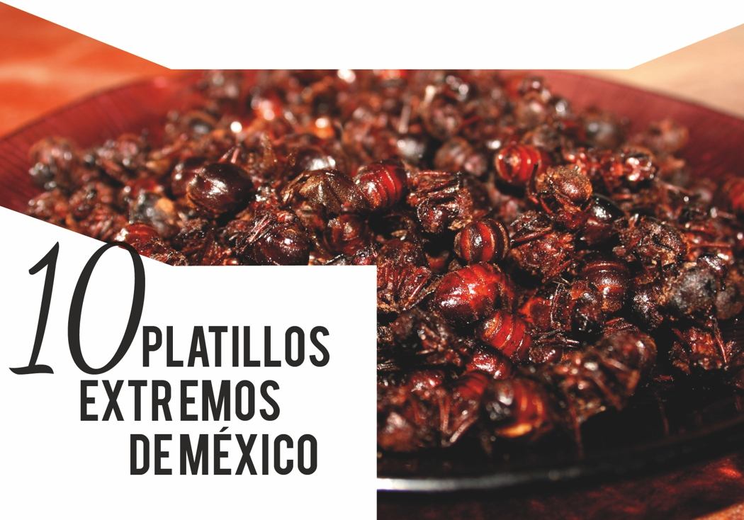 10 platillos extremos en México